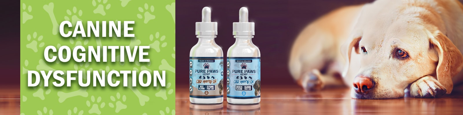 Pure Paws CBD Oil for Canine Cognitive Dysfunction