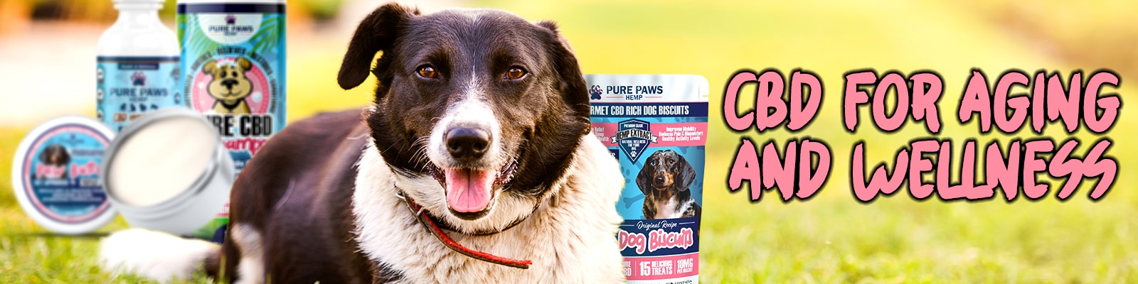 pure paws cbd oil paw buttter and dog treats for aging dogs