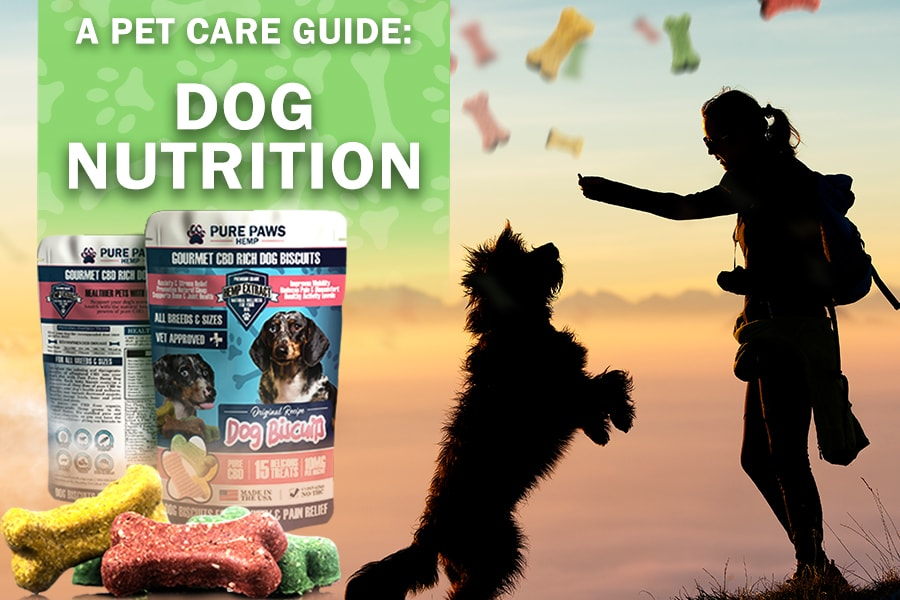 Pure Paws Dog Biscuits for Nutrition