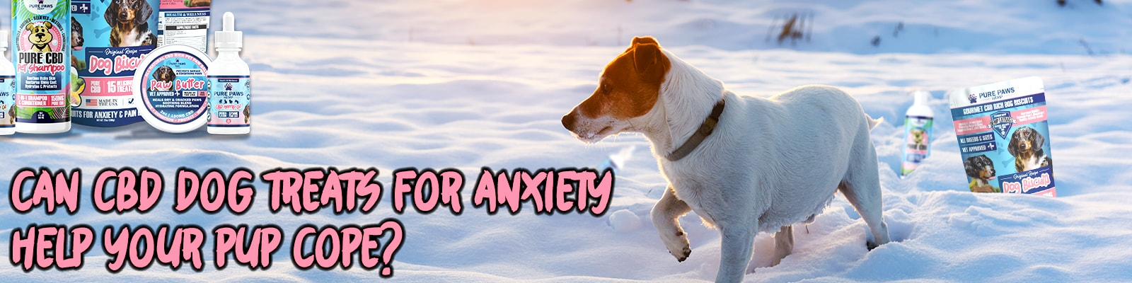 Pure paws cbd dog treats for anxiety