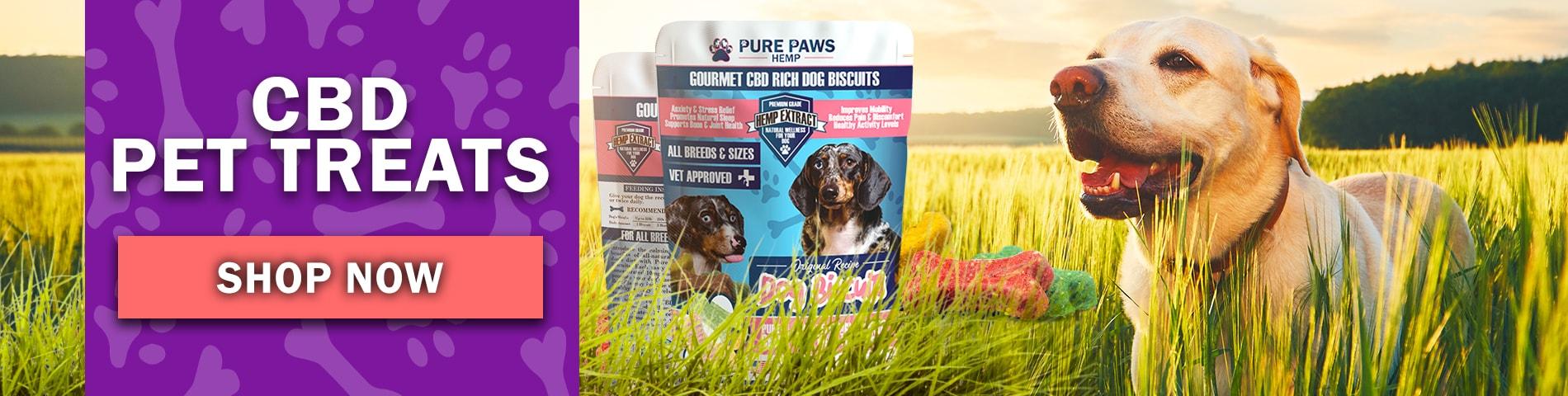 Pure Paws Hemp CBD Dog Biscuits