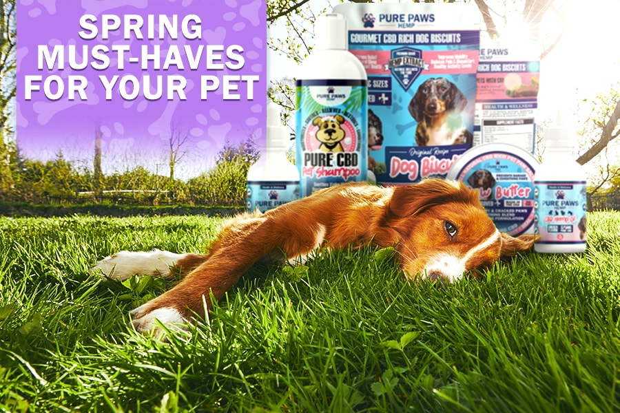 Pet Products you need this spring
