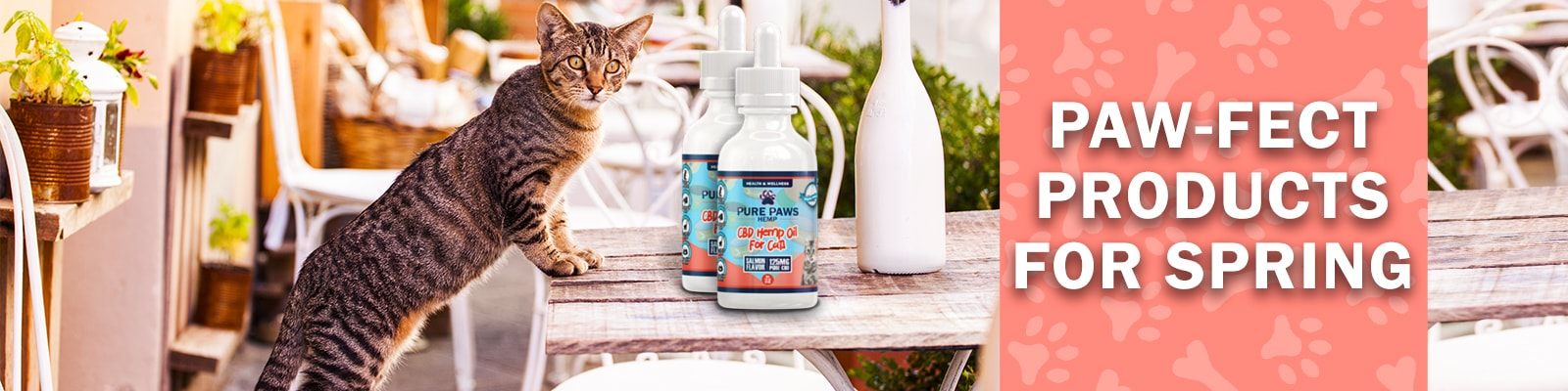 Pure Paws Hemp Products for Cats and Dogs