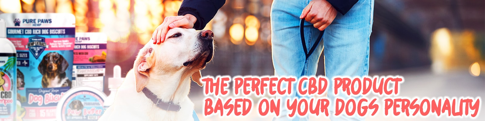 pure paws cbd bundle for your dog's personality