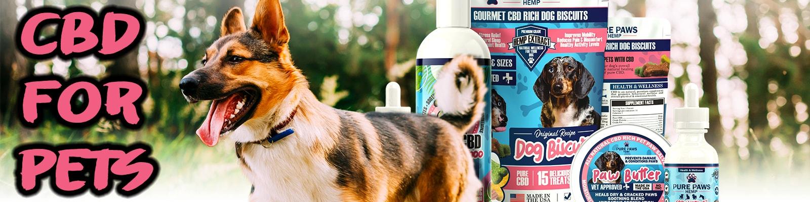 pure paws bundle cbd for pets