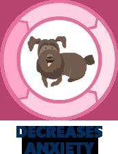 CBD Decreases anxiety icon