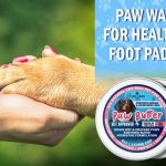 Paw Butter for Dog Paws