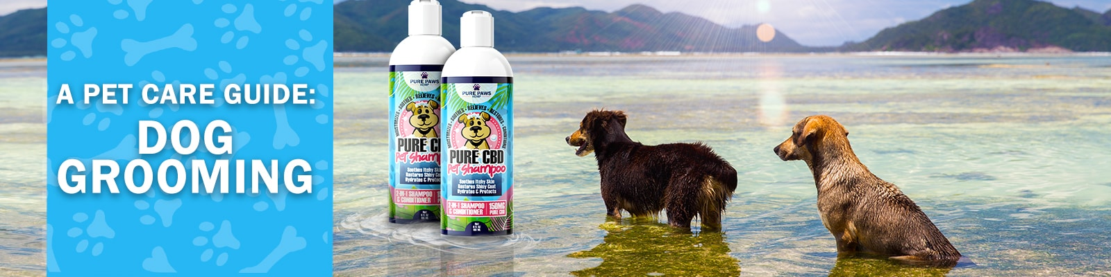 Pure Paws Hemp Shampoo for Dog Grooming Pet Care Guide